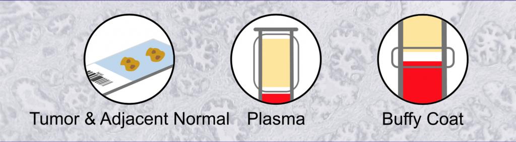 Biochain Matched Sample Sets